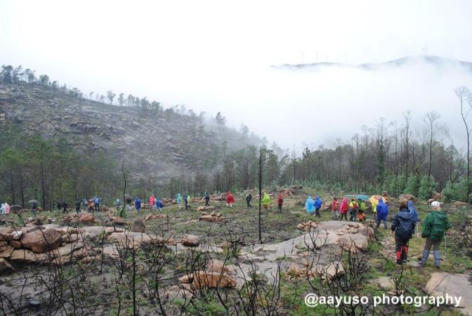 Monte do Pindo (2)