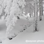 Nieve en el Chorro Grande, Segovia