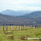 De ruta por la Selva de Irati (i): subida al Monte Menditxuri