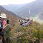 Ruta por los Ancares (iv): subida al alto del Mirandelo desde Candín.