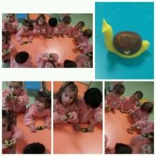 frutos secos (5)
