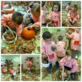 otoño (12)