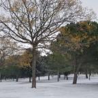 Ruteando por Valladolid en tiempos de nieves…
