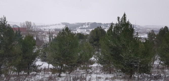 Nevada Valladolid (33)
