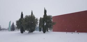 Nevada Valladolid (37)