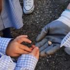 Huerto Escolar, un proyecto de Aprendizaje – Servicio.